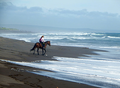 woman riding brown horse on beach during daytime