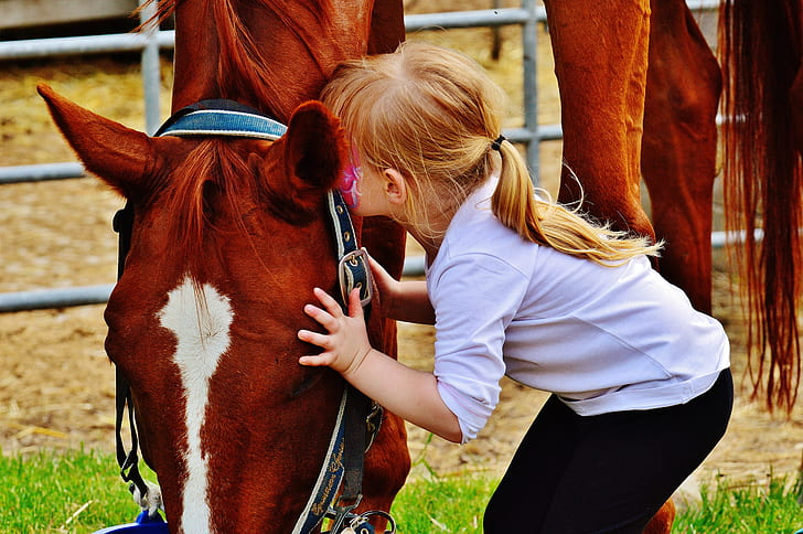 girl kissing brown and white horse