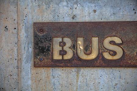 brown Bus wallplate
