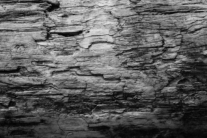 grayscale photo of wood