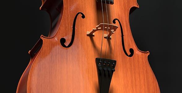 brown cello string instrument