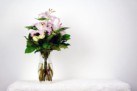 pink and white flower in clear glass vase on white towel
