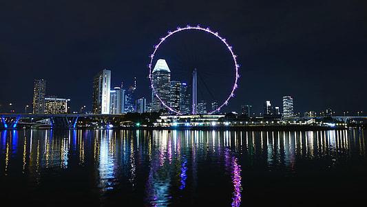 purple ferris wheel near body of water during night time