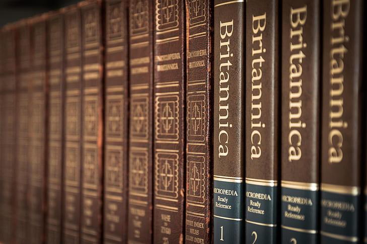 Britannica book lot