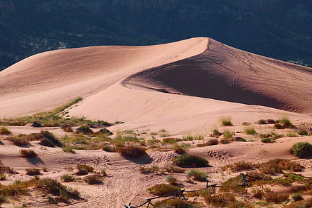 stock photography of desert