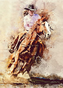person riding in horse