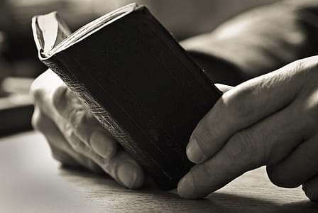 person holding mini book