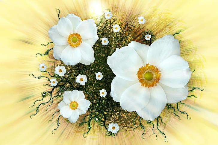 White Petaled Flowers Wallpaper
