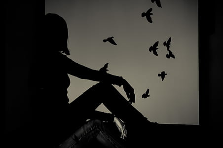 Silhouette of Woman Sitting on Window Watching Birds Flying