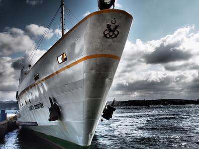 gray cruiser ship on body of water during daytime