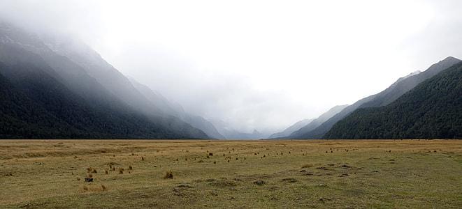 grass field between valley