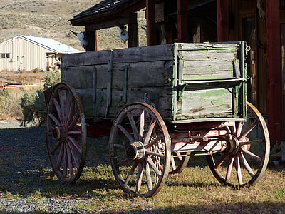 green and brown carriage beside house