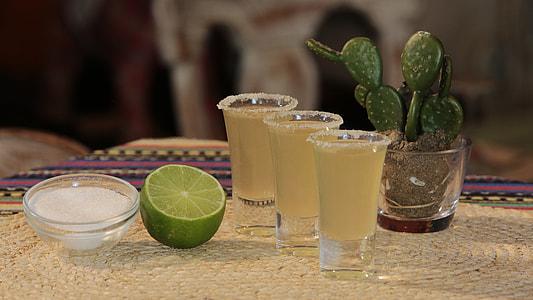 three shot glasses near cactus plant