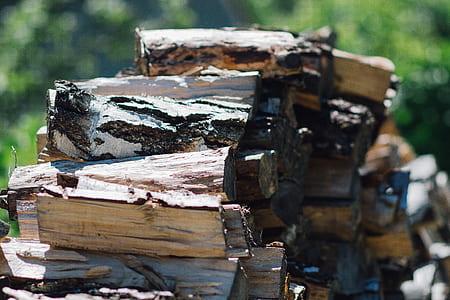 Brown Firewood during Daytimes