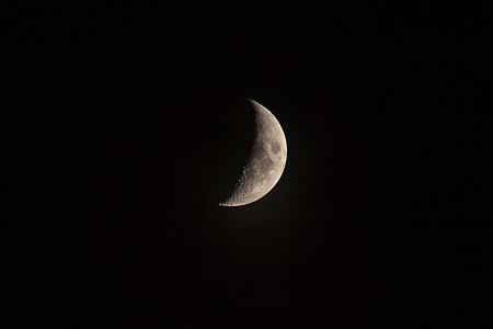 close up photo of half moon