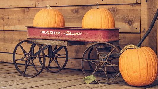 two pumpkins on red Radio wagon