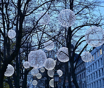 photo of pendant string lights on tree