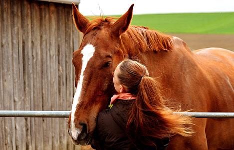horse beside woman