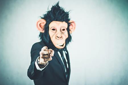 black suit jacket with monkey face illustration