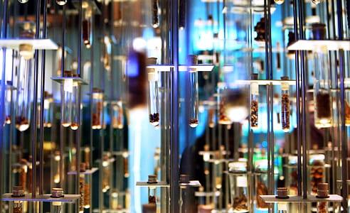 shallow focus of glass bottles