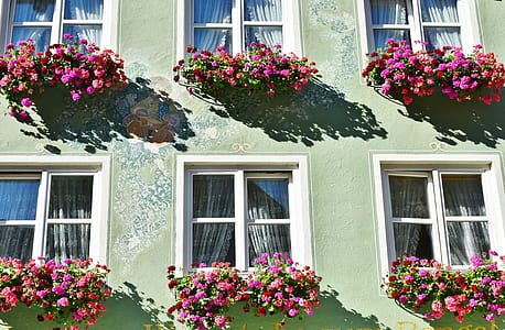 green painted house surrounded by flowers