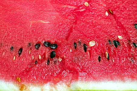 focused photo of sliced watermelon and watermelon seeds