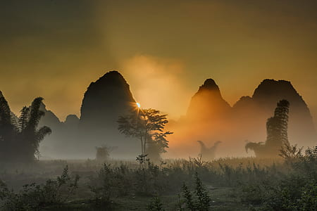silhouette photography of mountain range and trees