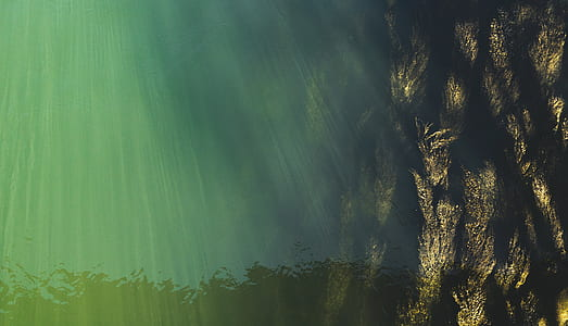 green and black abstract digital wallpaper