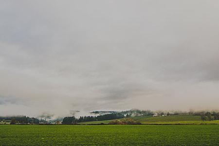 photo of grass field overlooking mountain
