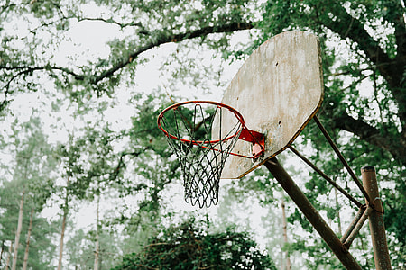 selective focus photography of red basketball hoop with brown board under tall tree