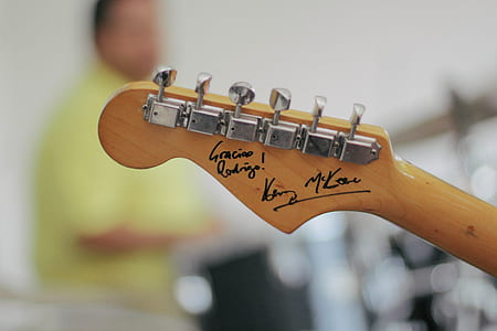 autographed brown guitar pegs