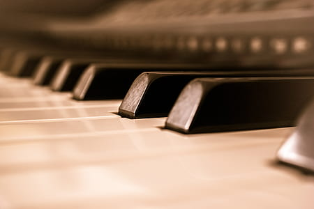 shallow focus photography of white and black piano