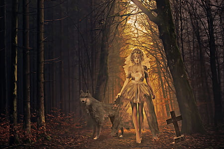 photo of woman with gray wolf