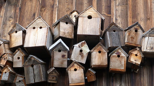 brown wooden bird houses