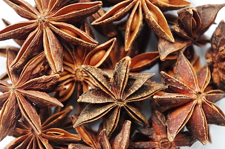 macro photography of star anise lot