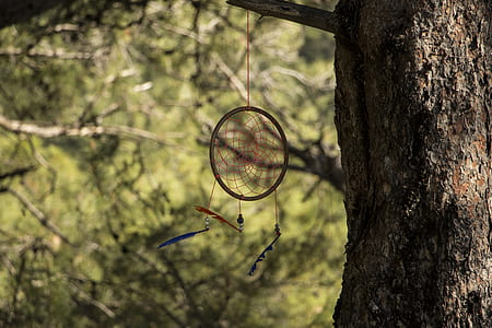 close-up photo of dream catcher