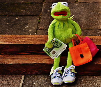 Kermit the Frog sitting while holding banknote
