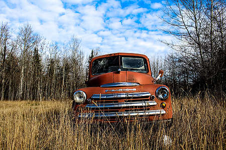 red car on dried grassland