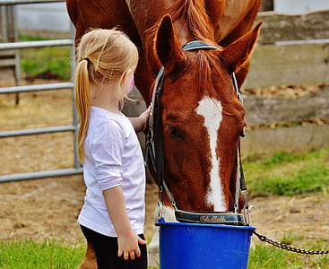 girl in white shirt holding horse