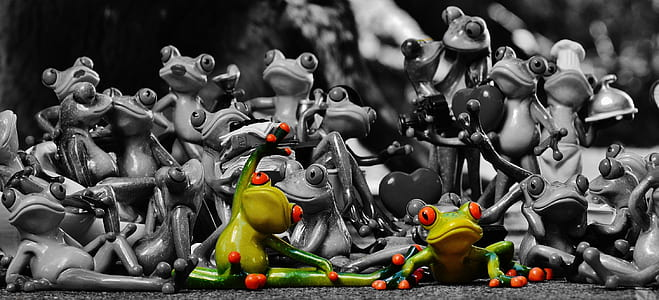 selective color of green frog