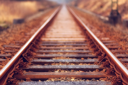 brown, metal, rail, green, soil, train track