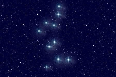 white stars digital wallpaper