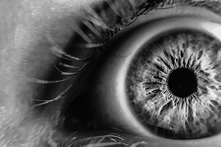 grayscale photo of human eye
