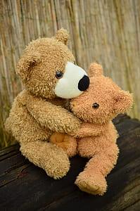 two bear hugging plush toys