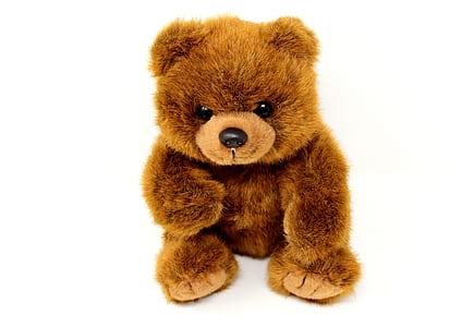 brown bear plush toy