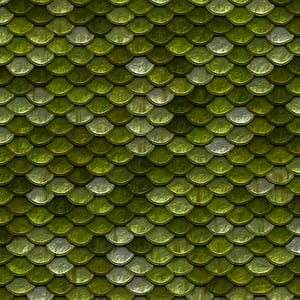 green fish scale