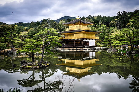 yellow and white wooden house across of body of water during daytime