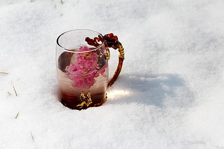 pink flowers on clear glass mug