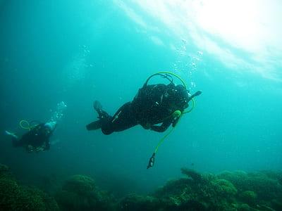 two people scuba diving beneath sea