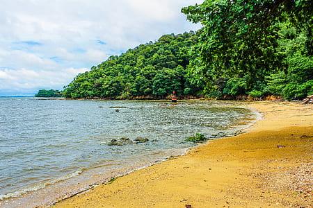 Beach Shoreline Photo